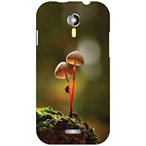 Micromax A117 Canvas Magnus Back Cover - Fabulous Designer Cases
