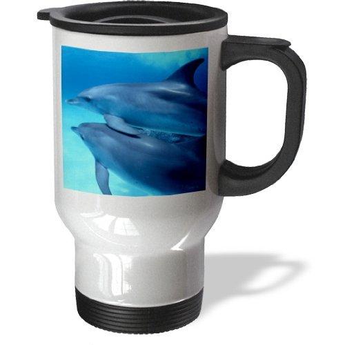 statuear-dos-jovenes-delfines-14-ounce-de-acero-inoxidable-taza-de-viaje