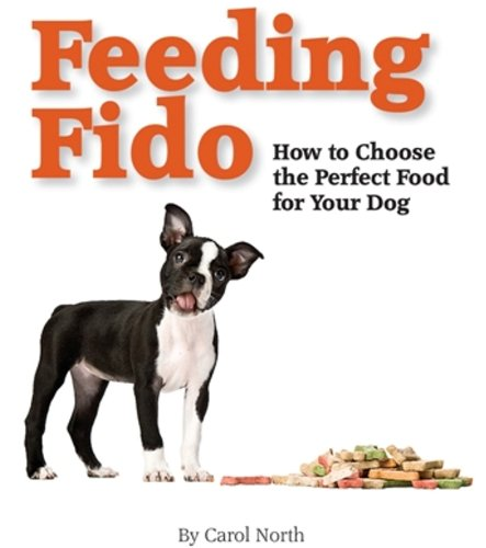 Feeding Fido, How To Choose The Perfect Food For Your Dog