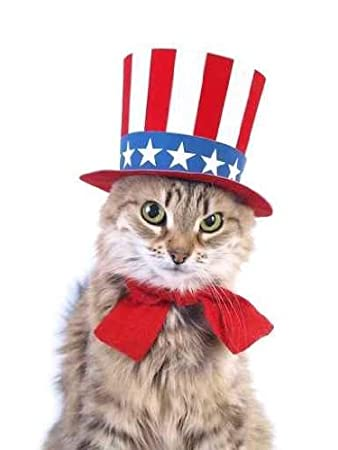 Large Patriotic Cat Wall Decal Patriotic Cats