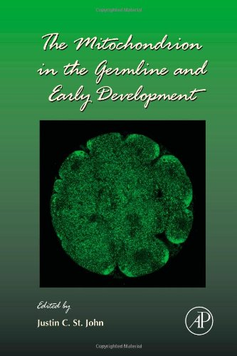 The Mitochondrion In The Germline And Early Development (Volume 77)