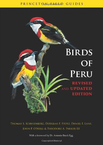 Birds of Peru: Revised and Updated Edition (Princeton Field Guides)