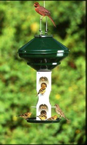 Cheap Mixed Seed 3 Gal w/o Cage w/o Pole Bird Feeder (BS-VCAV2M)