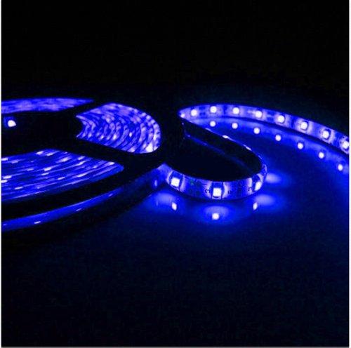 Color Blue 10M Waterproof 600 Led 3528 Smd Flexible 12V Led Light Lamp Strip