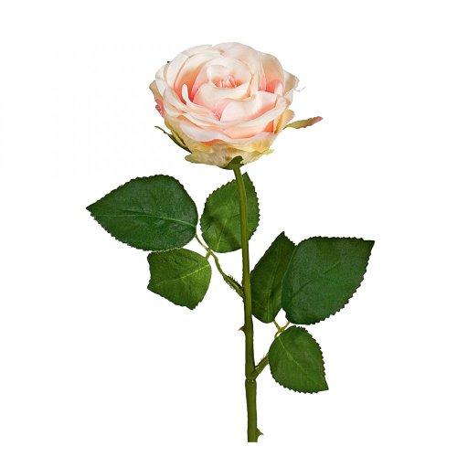 Rose Wasserstiel 47,5cm h-rosa