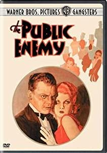 Cover of &quot;The Public Enemy&quot;