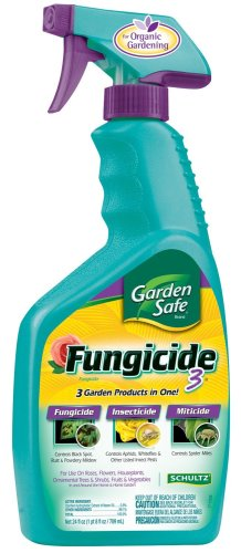 Bayer Insecticide January 2012