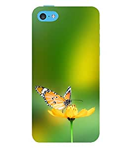 ifasho Designer Phone Back Case Cover Apple iPhone 5c ( Fresh Coffee Logo )