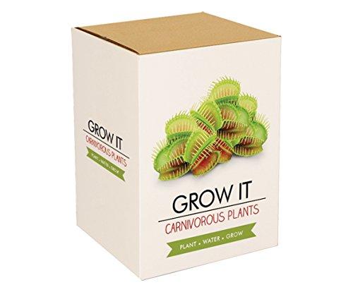 kit-faites-pousser-des-plantes-de-piege-a-mouche-venus