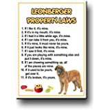 Leonberger Property Laws Fridge Magnet