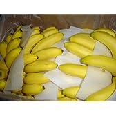 フルーツyamakiti フィリピン産バナナ 13キロ(4~6房)