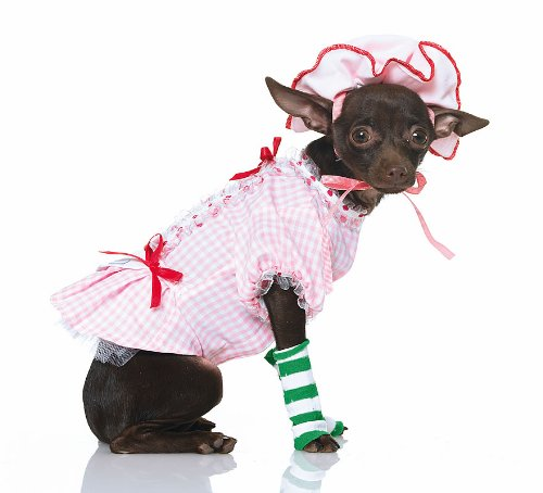 Country Pup Pet Costume