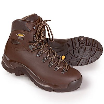 Asolo Women's TPS 520 GV Hiking Chestnut Leather Boot 7.5 M US