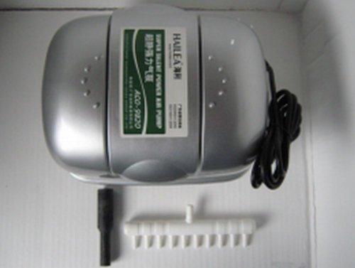 Arateur-Hailea-ACO-9820