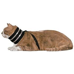 BiteNot Cat Collar
