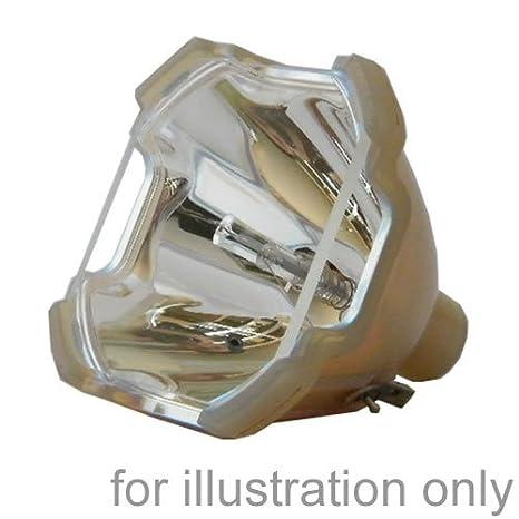 SUPERLAMPS Ampoule de rechange pour projecteur LG AJ-LAN1 Leuchtmittel AN110-LG-mâle