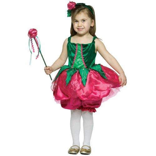 Rose Flower Fairy Costume Toddler 3t-4t