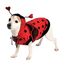 Lady Bug Pet Costume, X-Large