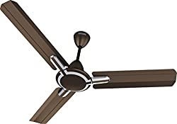 Standard Cruiser Premium Deco 1200mm Ceiling Fan (Pearl Brown)