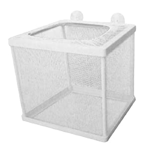 Jardin Plastic Frame Net Fry Hatchery Breeder for Aquarium, White