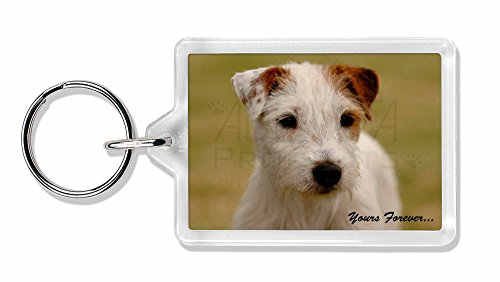 """Parson Russell Terrier \"""" Yours Forever ' Foto Schlüsselbund TierstrumpffüllerGe"""