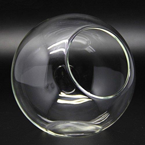 テラリウム ガラスドーム ガラス容器 ハンドメイド 横置き丸口/小 【並行輸入品】