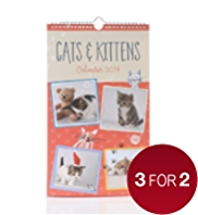Cats & Kittens Slim 2014 Calendar