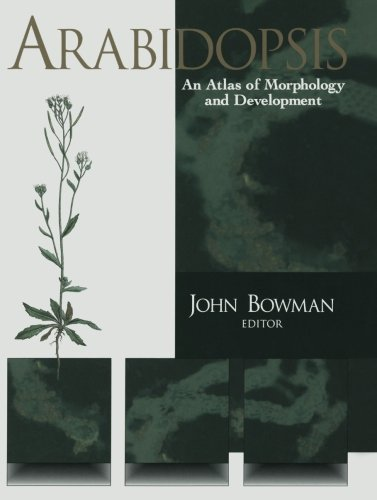 Arabidopsis: An Atlas of Morphology and Development