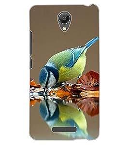 ColourCraft Beautiful Bird Design Back Case Cover for XIAOMI REDMI NOTE 2 PRIME