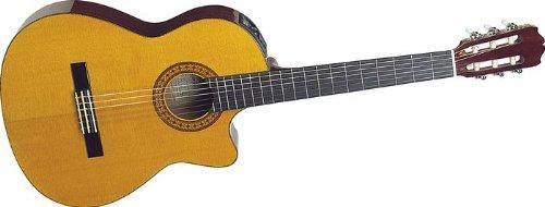 Takamine G Series Eg124C Acoustic Electric Classical Guitar