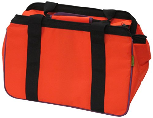 Vivid Allon Eco Bag, Orange from JanetBasket