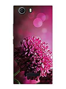 Treecase Designer Printed Hard Back Case Cover For Micromax Canvas Nitro 2 E311