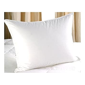 sheetsnthings Down Alternative Pillow, Queen Size, 300 Thread Count Cover 100% Egyptian Cotton, Allergy Free at Sears.com