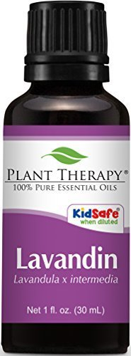 Lavandin Essential Oil 100% Pure, Undiluted, Therapeutic Grade. (30 ml (1 oz)) by Plant Therapy Essential Oils