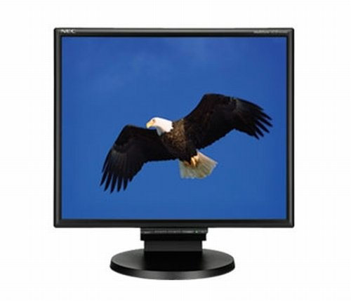 Image for product NEC:LCD195NXM-BK-R