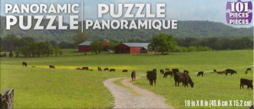 101 Piece Panoramic Jigsaw Puzzle - NEW 738076991631 - 1