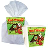 Composting worms - 2,100 red wigglers