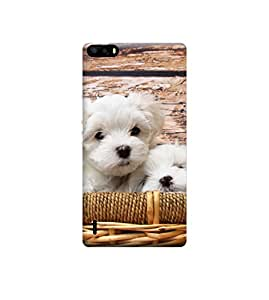 Ebby Premium Printed Back Case Cover With Full protection For Huawei Honor 6 Plus (Designer Case)
