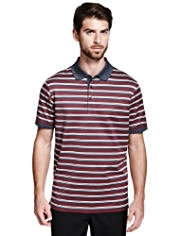 Collezione Pure Cotton Jacquard Striped Polo Shirt