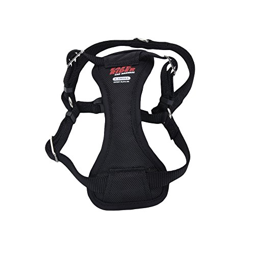 Can Easy Walk Harness Be Used With Car Seat Belt