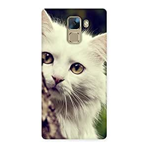 Premium Hiding Cat Multicolor Back Case Cover for Huawei Honor 7