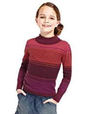 Pure Cotton Roll Neck Striped Jumper with StayNEW™