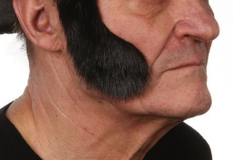 Mutton chops sideburns - 1