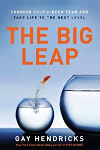 "Cover of ""The Big Leap: Conquer Your Hidd..."