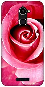 The Racoon Grip Red Rose hard plastic printed back case / cover for Coolpad Note 3 Lite