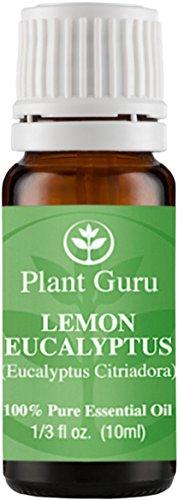 Lemon Eucalyptus Essential Oil 10 ml. 100% Pure, Undiluted, Therapeutic Grade. (Lemon Myrtle Oil compare prices)