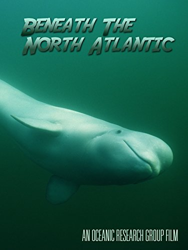 Beneath The North Atlantic