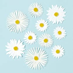 Martha Stewart Crafts Stickers, Dimensional Daisy Glossary