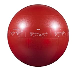 GoFit 65cm Professional Stability Ball