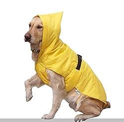 Zorba Rain Coat , 20-inch